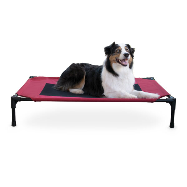 K & H Pet Products Elevated Pet Bed - Large
