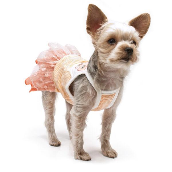 Dogo Pet Citrus Dress
