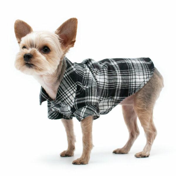 Dogo Pet Black Flannel Button Down Shirt