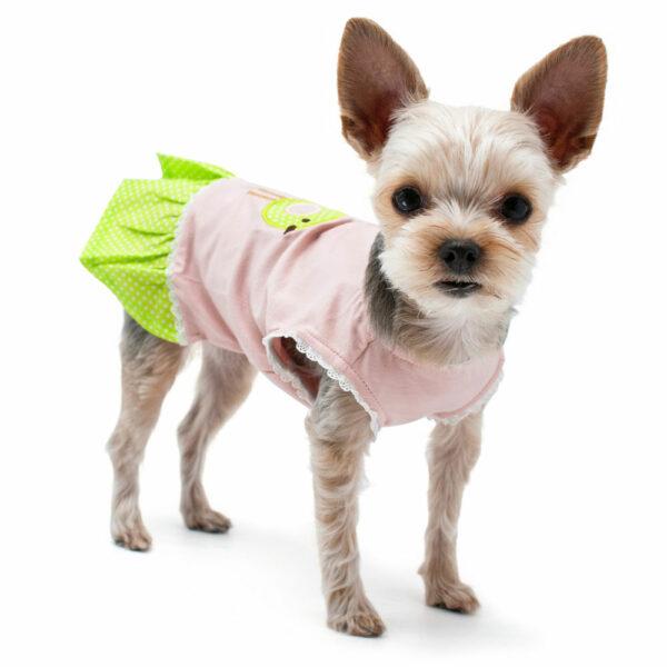 Dogo Pet Little Birdy Dress