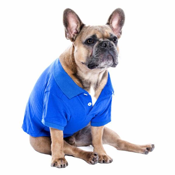 Parisian Pet Blue Pollo Shirt