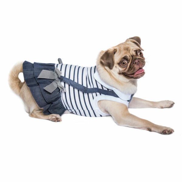 Parisian Pet Preppy Girl Dress