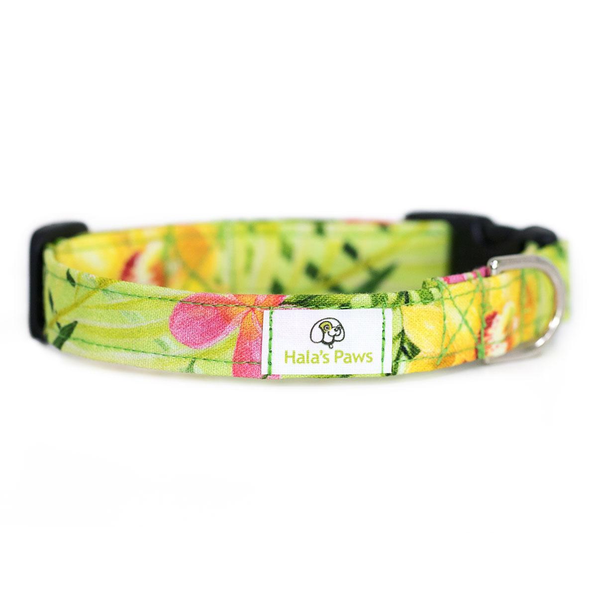 Hala's Paws Collar Green Hawaiian